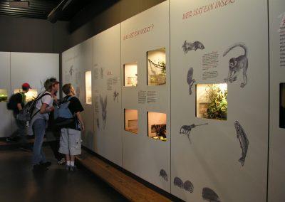 Besucherinformation, Wand mit eingelassenen Terrarien